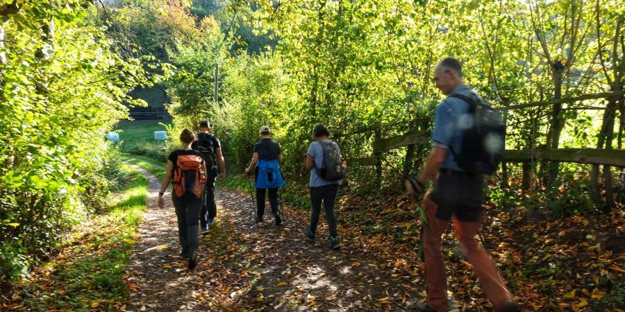 Wanderung in der Eifel rund um Burg Nideggen